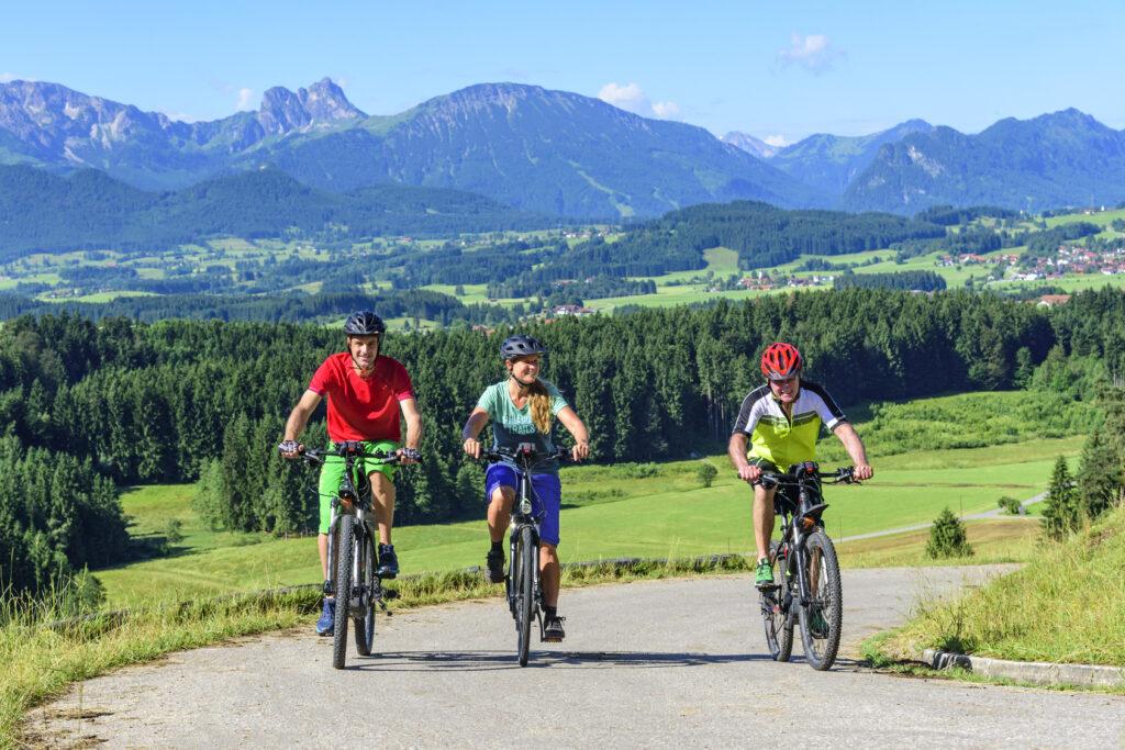 E-Bike Fahrer vor Alpenkulisse