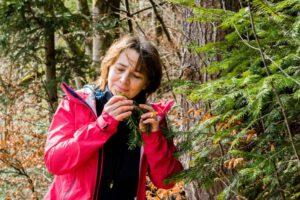 Frau riecht an würziger Waldplflanze