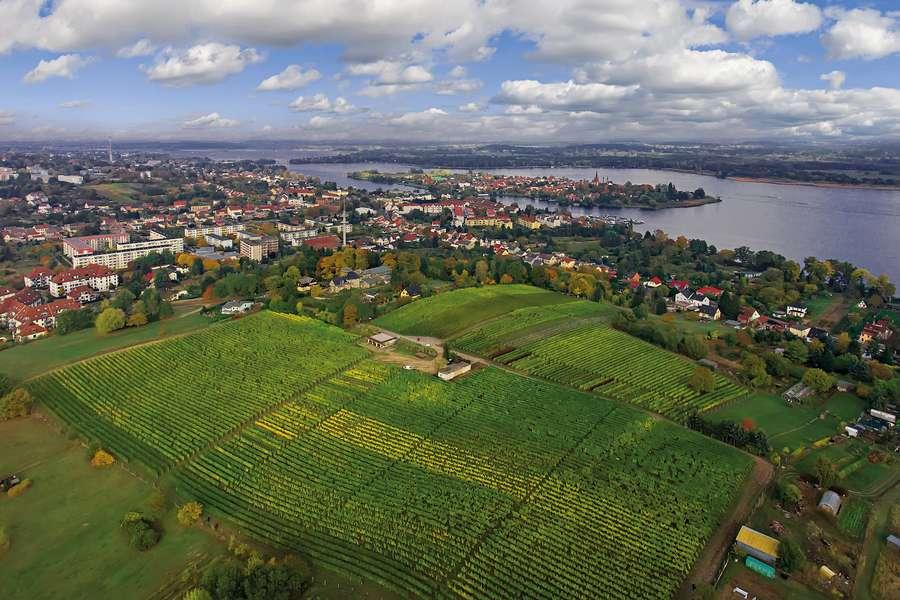 Luftaufnahme der Havel und Altstadt Werder